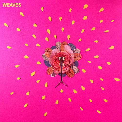 weaves.1