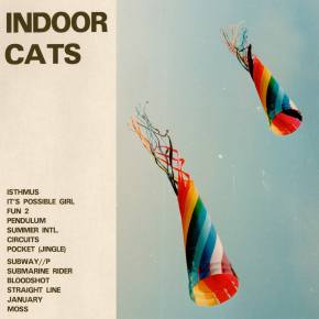 LYSSNA: Indoor Cats – Fun 2